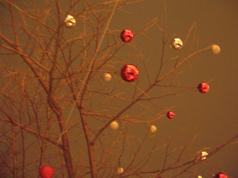 Christmastreelane3